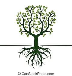groene, vector, boompje, illustration., roots.