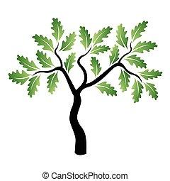 groene, vector, eik, jonge, boompje
