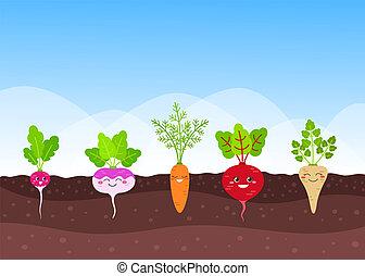 groente, gekke , root-crops, tuin