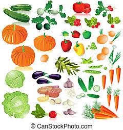 groentes, vrijstaand, verzameling