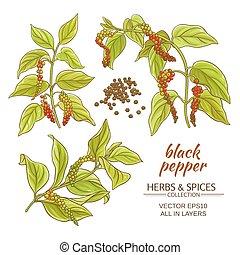 grond peper, black