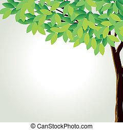 groot, boompje