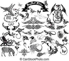 groot, set, tatoeëren