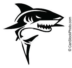 haai, vector, illustratie