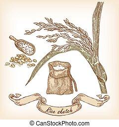 hand, bakkerij, zak, boon, rijst, getrokken, sketch., illustratie