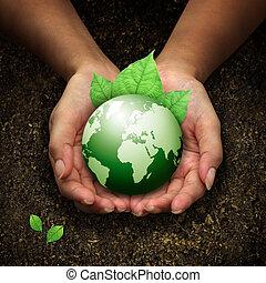 handen, vasthouden, aarde, groene, menselijk