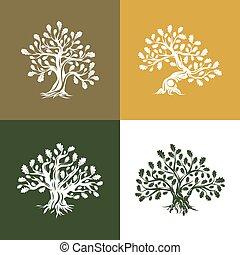 heilig, silhouette, logo, boompje, eik, vrijstaand, achtergrond, reusachtig