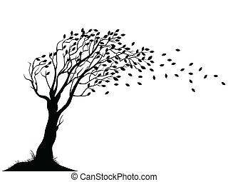 herfst, boompje, silhouette