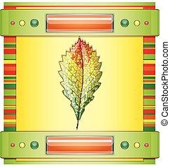 herfst, leaf., kleurrijke