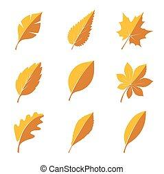 herfst, leafs., set, illustration., vector