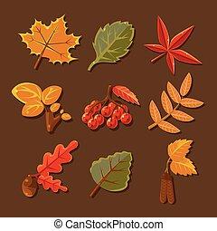 herfst, set, vector, leaves., kleurrijke