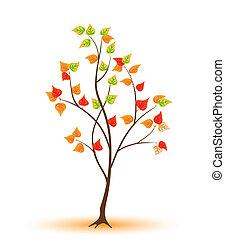 herfstachtig, jonge, boompje