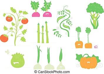 het glimlachen, groentes, verzameling