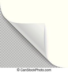 hoek, schaduw, papier, gekrulde