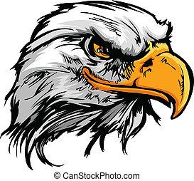 hoofd, illustratie, adelaar, vector, grafisch, mascotte, kaal