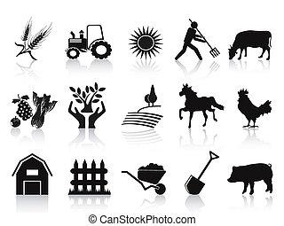 iconen, black , set, boerderij, landbouw