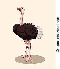 illustratie, ostrich., schattig, spotprent, vector