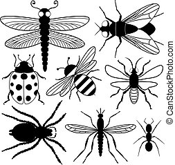 insect, acht, silhouettes