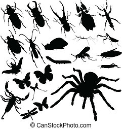 insect, vector, groep, silhouettes