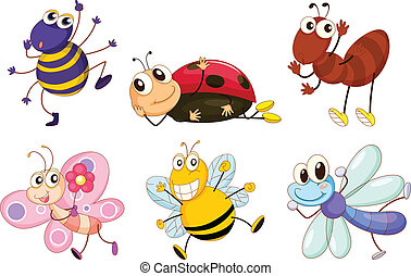 insecten, anders, insecten