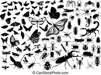 insecten, honderd