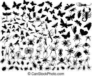 insecten, vector