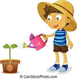 jongen, plant, watering, witte achtergrond