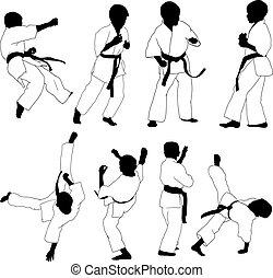karate, geitjes