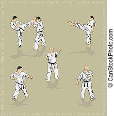 karate., het tonen, set, mannen
