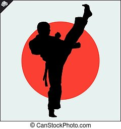karate, hoog, kick., mawashi.