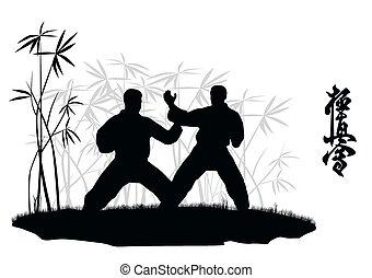 karate, illu, mannen, verloofd, twee