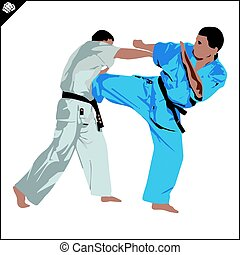 karate, kudo, silhouette, scene., vechter, arashi
