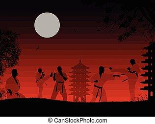 karate, ondergaande zon , vechters, silhouette