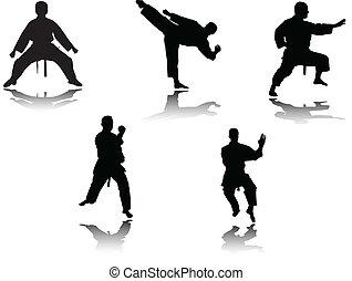 karate, vechters, vector, -