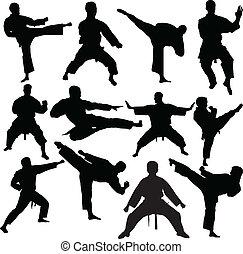 karate, vector, -, verzameling