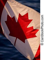 laat, zon, vlag, canadees