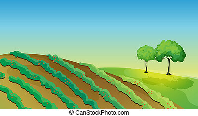 landbouwkundig, land, bomen