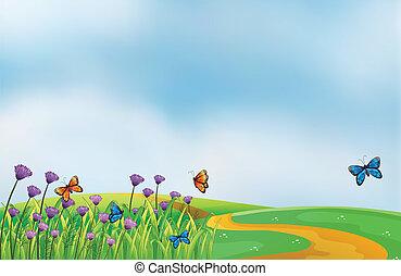 langs, bloemen, straat, viooltje