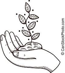 leaves., menselijke hand