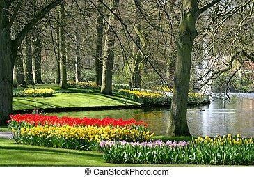 lente, park, tijd