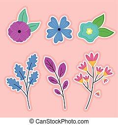 lentebloemen, bundel, zes, vellen