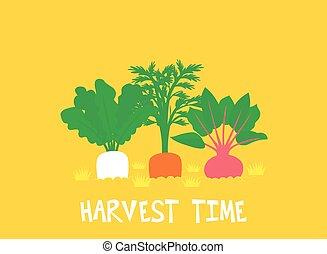lettering, gewas, wortel, illustratie, tijd, oogsten
