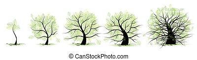 leven, oud, tree:, leeftijd, jeugd, volwassenheid, kindertijd, stadia, adolescentie