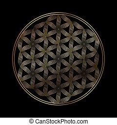 leven, vector, bloem, pictogram