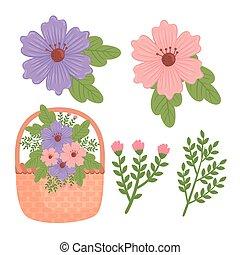 mand, bundel, bloemen, lente, versiering