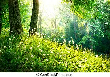 mooi, landschap., lente, nature., bomen, groen gras