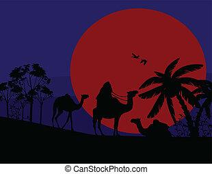 ondergaande zon , sahara woestijn