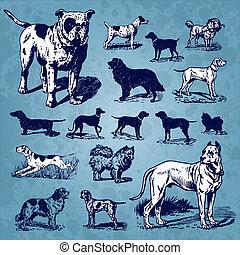ouderwetse , set, honden, (vector)