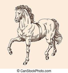 paarde, harness.