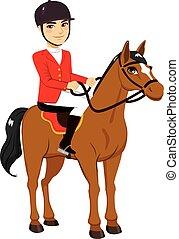 paarde, mannelijke , passagier